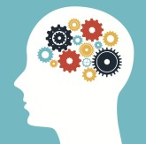 Brain_thinkdesign_shutterstock_176571203